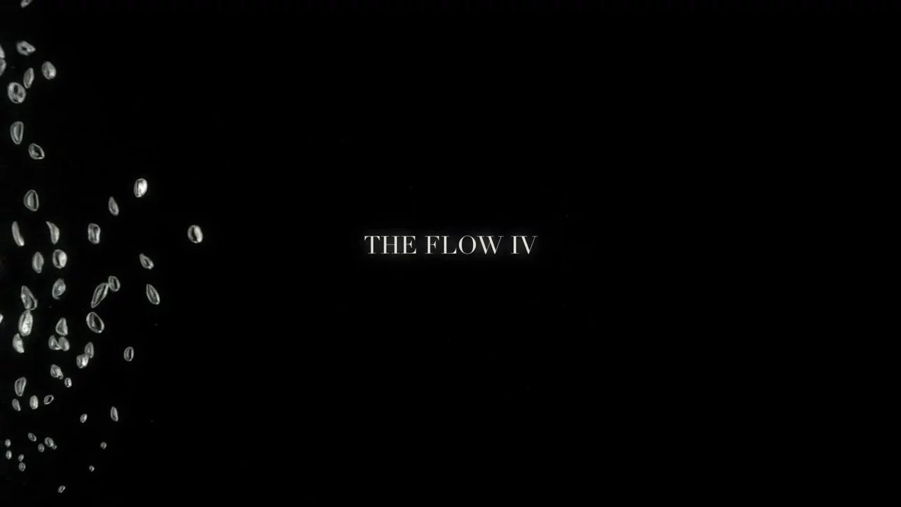 The Flow IV
