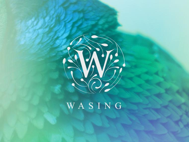 Wasing_thumb