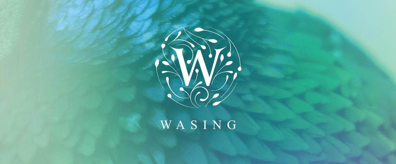 wasing8
